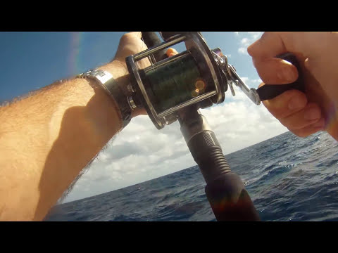 How To Fish Fort Lauderdale Miami Deep Sea Sport Fishing