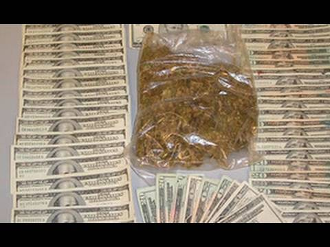 California Collects $100,000,000 in Marijuana Sales Tax - Diggnation Daily