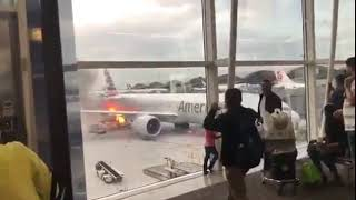 American Airlines employee to passenger: Hit me