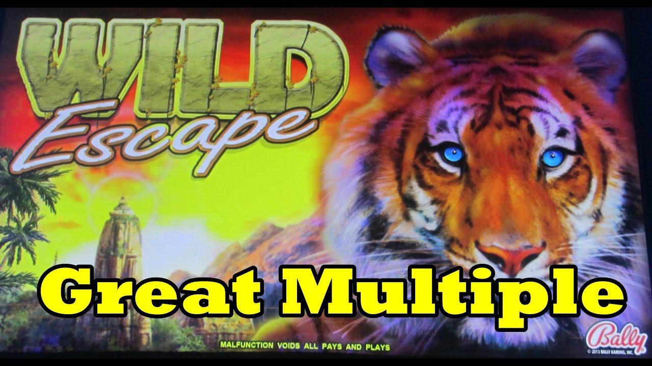 Wild escape slots