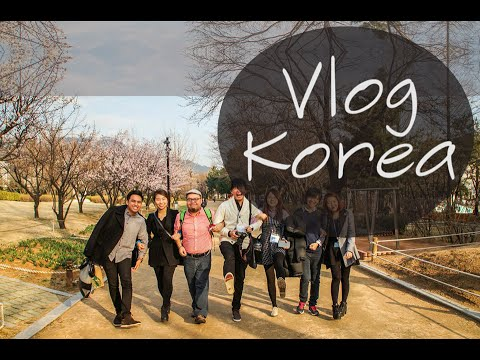 Travel to Korea | Vlog | Seoul and Busan