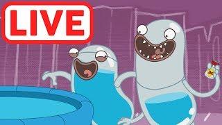 Hydro et Fluid LIVE   La science est amusante!   Dessins Animés pour Enfants   WildBrain