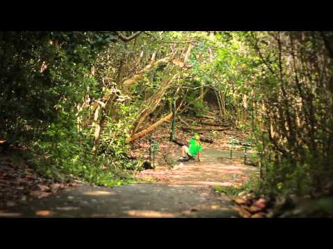 Longboarding, William Royce gets Vicious in Puerto Rico