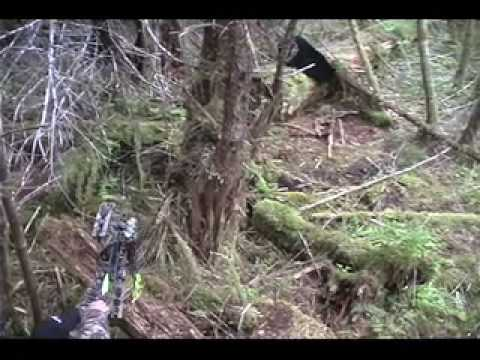 Cameron Hanes' Hoyt Bowhunting Highlight Reel Video