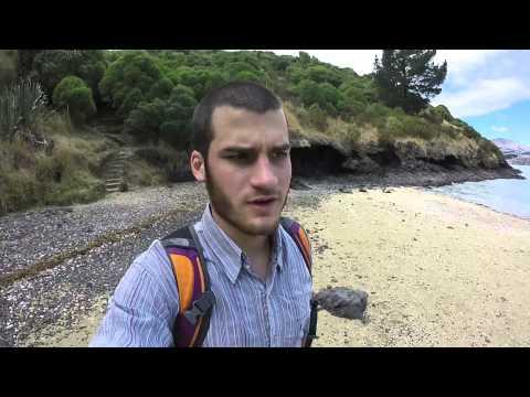 Traveling around New Zealand. Christchurch. Un dia cualquiera de playa. Video 6.