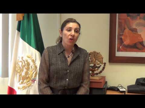 Cónsul General en Santa Ana Hon. Alejandra Garcia Williams - contra esclavitud moderna - Part 2