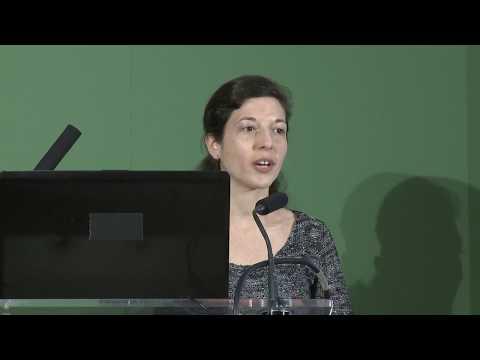 Amandine Aviles : Effet d'un perturbateur endocrinien sur la noctuelle du coton