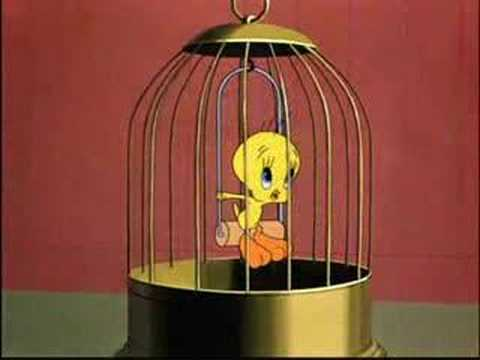 Tweety Video