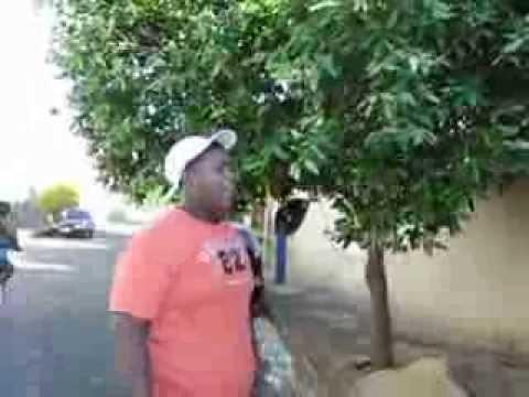 GORDINHO DO VÍDEO'' OLHA O TIRO'' ORIGINAL CAIU DA CADEIRA KKKKKK - YouTube