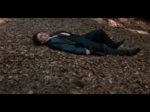 Harry/Ginny - Broken Video