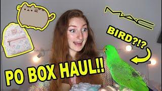 PO BOX HAUL & UNBOXING! FANMAIL, PR, PUSHEEN & MORE | Pretty Pastel Parcels #1
