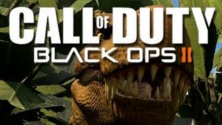 Black Ops 2 - Confusing Question Fun!  (Funny Black Ops 2 Moments)