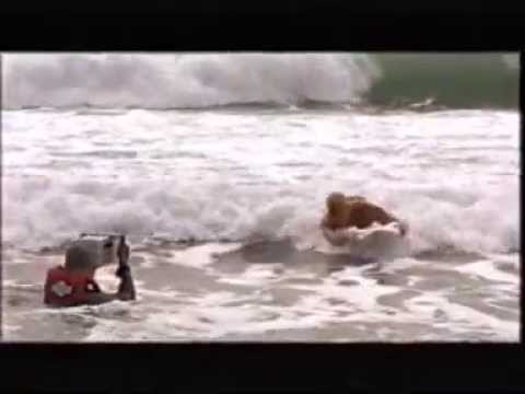 due scene tratte da blood surf 2000 krocodylus blood surf
