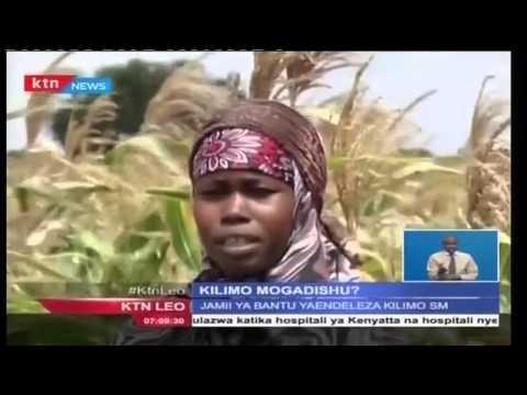 Wenyeji wa Somalia wavuna matunda ya amani