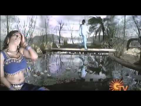 Tamil Hot Songs 42 Malavika Hot video