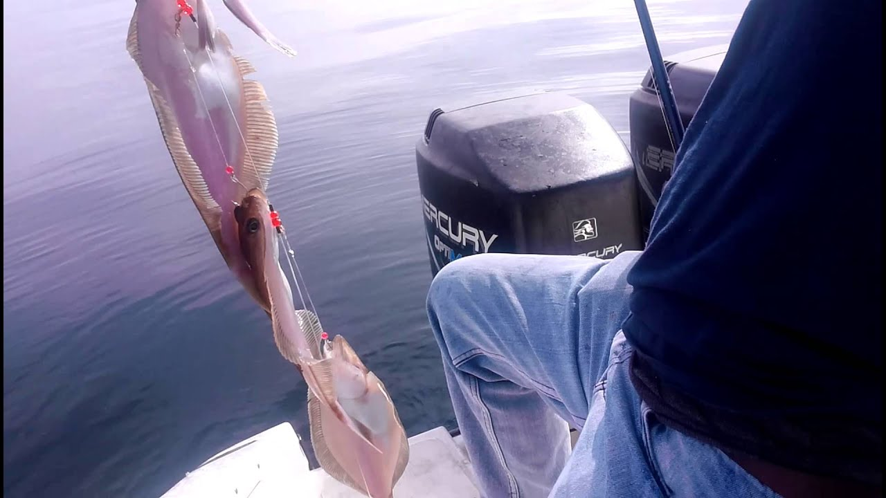 Go big fishing youtube for Fishing license for disabled person