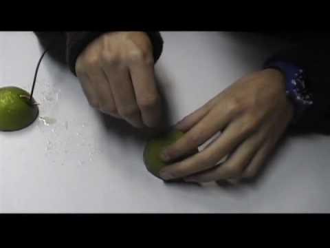 Como acender uma l�mpada usando lim�es