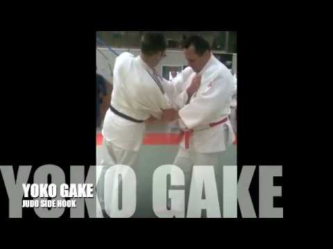 YOKO GAKE 横掛 JUDO Side Hook Image 1