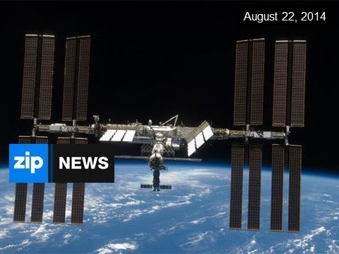 Plankton In Space - August 22, 2014