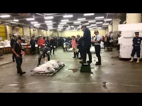Tsujiki Fish Market, Tokyo - Tuna Auction
