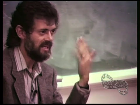 Terence McKenna - Psychedelics Before and After History