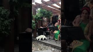 Honey Island Music Dance Brazil