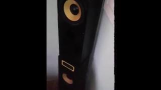 Fenton 250/500W 8 Ohm Hangszoró / Hangfal teszt
