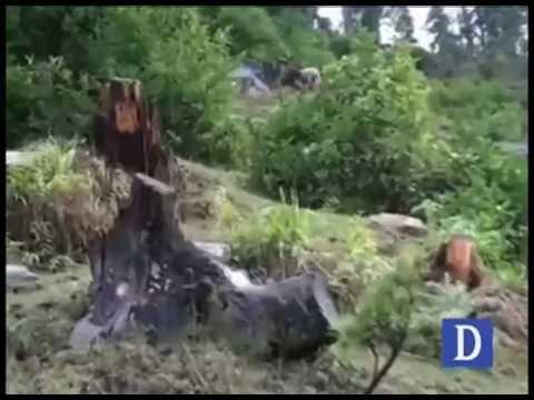 Deforestation in Shangla
