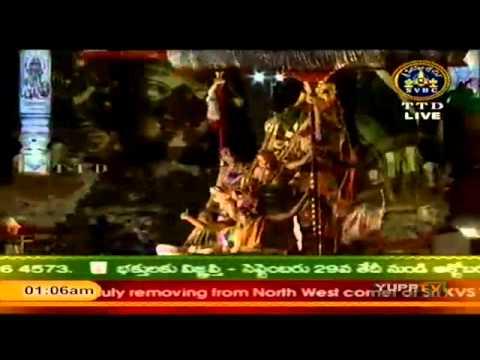 Garuda Vahanam / Garuda Seva - Sri Vari Brahmotsavams 2011 - 01