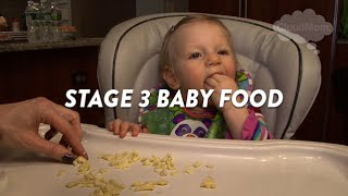 Stage 3 Baby Food | CloudMom