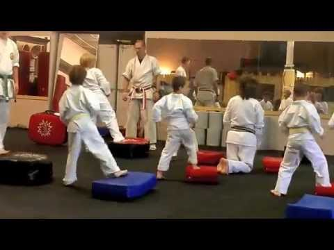 Shorin-Ryu Shorikan Karate Training Image 1