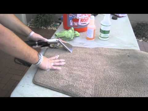 how to clean stained carpet by yourself