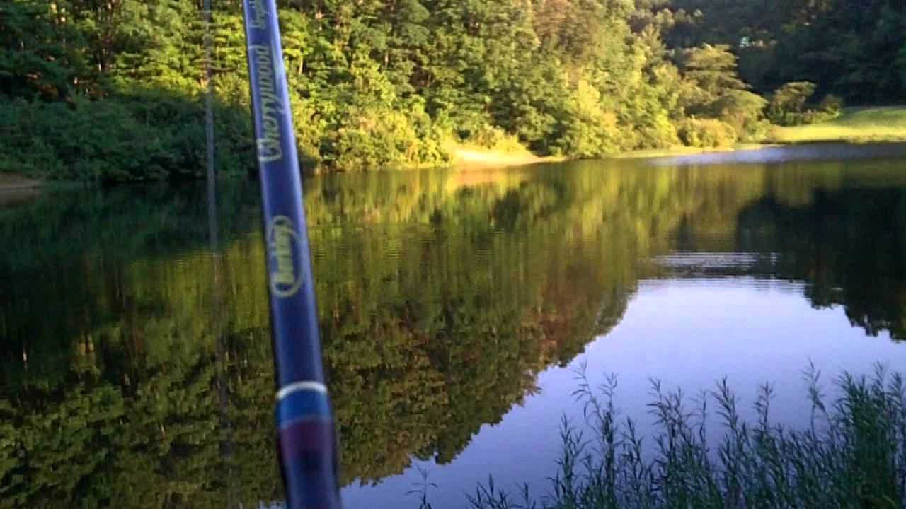 Fishing coopers rcok wv trout pond youtube for West virginia out of state fishing license
