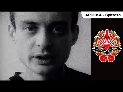 Synteza - Apteka