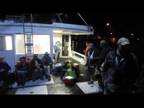 Pelagic Bird Trip 2014