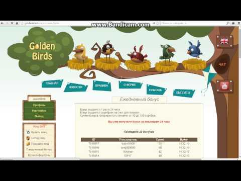 Взлом игры напёрстки на сайте GoldenBirds.