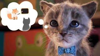 Lindo Gatito Preescolar - Nuevo Gatito Aventuras Dibujos Animados Infantiles | Vídeos Graciosos