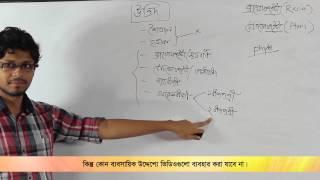 01. Bryophyta & Pteridophyta | ব্রায়োফাইটা ও টেরিডোফাইটা | OnnoRokom Pathshala