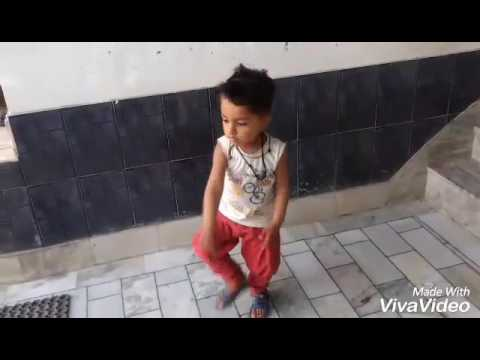 Dancing Star Tappu