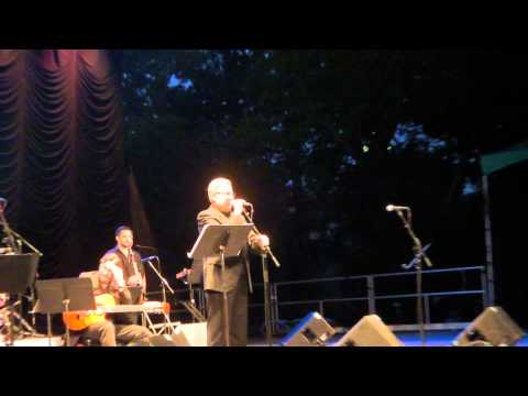 Zulfu Livaneli - Al Di Meola - Merhaba - Live From New York City Central Park 2011-06-16