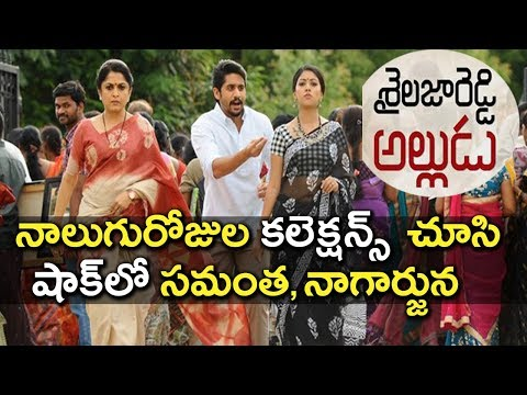 Sailaja Reddy Alludu Movie Collections Report | Naga Chaitanya | Anu Emmanuel | Tollywood Nagar