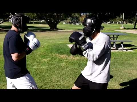 Tang Soo Do (white gloves) vs Kickboxing Sparring - hands only, 4-6 Image 1