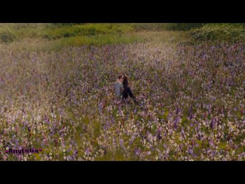 Bella le muestra a Edward sus pensamientos - Amanecer parte 2
