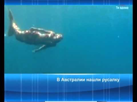 В Австралии нашли русалку. ТБН - Россия - YouTube