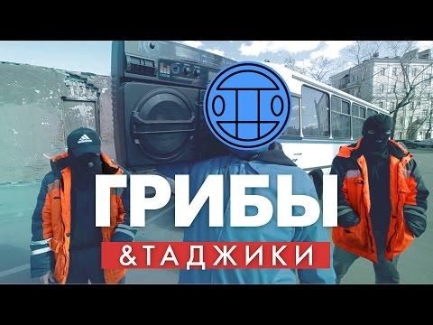 Таджики перепели Грибы - Тает Лёд // Пародия