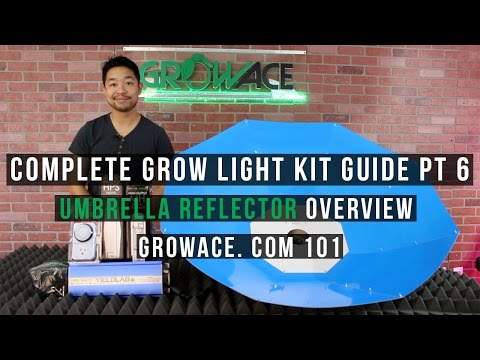 Complete Umbrella Light Kit Guide for Indoor Gardening
