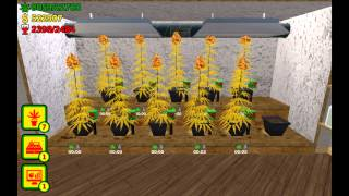 Weed Shop The Game 4 Android - Gameplay