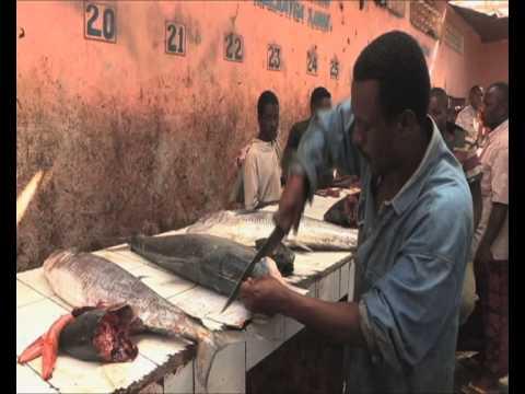 Fish Market in Mogadishu Somalia