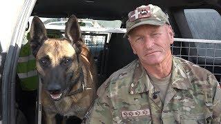 Narkohunden Pablo tilbage i Afghanistan