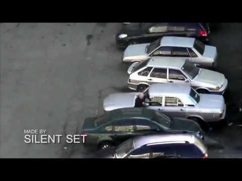 Puisis naidīgs pret automašīnām